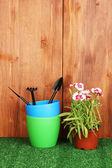 Zahradnické nástroje na dřevěné pozadí — Stock fotografie