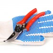 Pruner on garden gloves isolated on white — Stock Photo #11319458