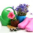 Watering can, galoshes, tools and plants in flowerpot isolated on white — Stock Photo #11319756