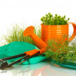 Garden tools on white background close-up — Stock Photo #11319976
