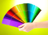 Hand holding bright palette of colors on green background — Stock Photo