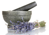 Lavender flowers with mortar isolated on white — Stock Photo