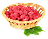 Fresh raspberries in wicker basket isolated on white — Stock Photo