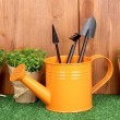 Royalty-Free Stock Photo: Gardening tools on wooden background