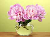 Three pink peonies in vase on wooden table on green background — Stock Photo