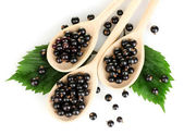 Fresh black in wooden spoons on white background close-up — Stock Photo
