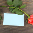 Beautiful rose on wooden background — Foto Stock