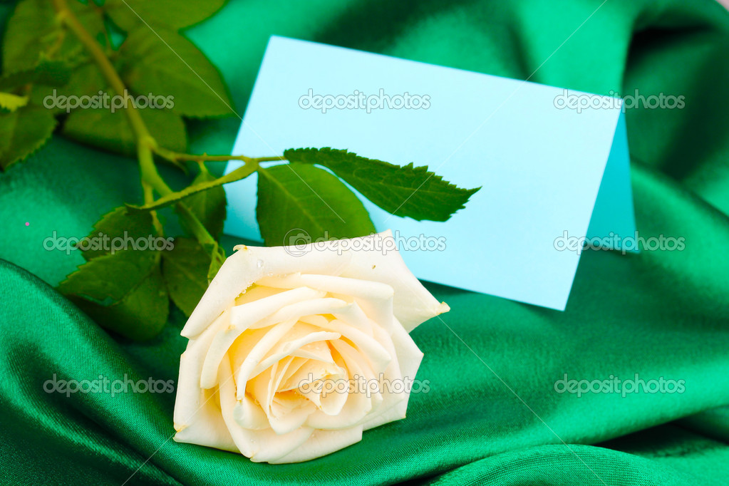 Beautiful rose on green cloth — 图库照片 #11360394