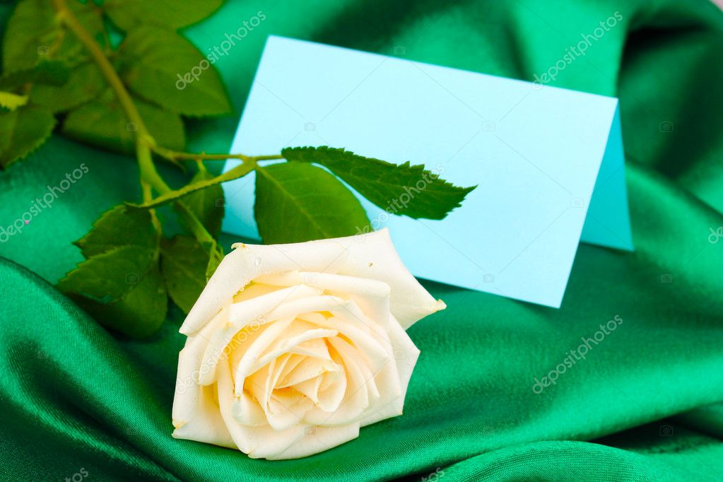 Beautiful rose on green cloth — Photo #11360394