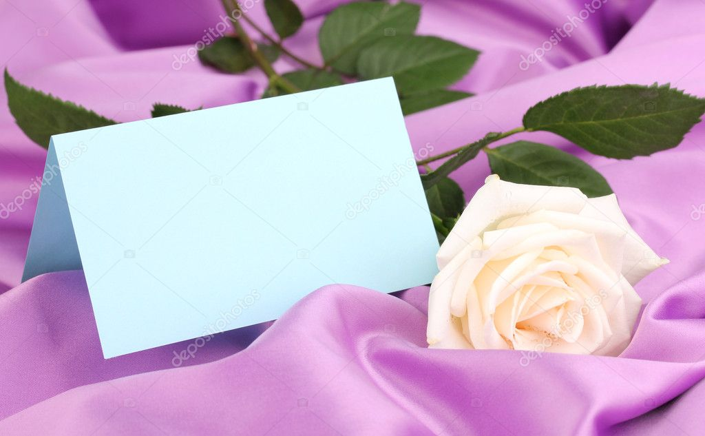 Beautiful rose on lilac cloth — Stock Photo #11360402