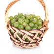 Green gooseberry in basket isolated on white — Stock Photo