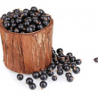 Black currant in wooden cup isolated on white — Stock Photo #11373034