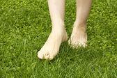 Legs walking on lawn — Stock Photo
