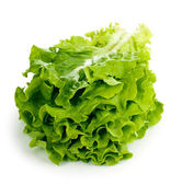 Fresh lettuce isolated on white — Stock Photo
