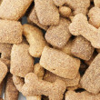 Background of dry dog food — Stock Photo