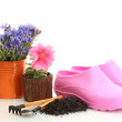 Watering can, galoshes, tools and plants in flowerpot isolated on white — Stock Photo #11466367