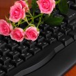 Pink roses on keyboard close-up internet communication - Стоковая фотография
