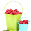 Fresh raspberries in buckets isolated on white - Stock Photo