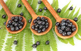 Tasty blueberries in wooden spoons on fern close-up — Stock Photo