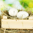 White eggs in a wooden box on hay on green background close-up — Stock Photo