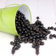 Black currant in metal bucket on wooden background — Stock Photo #11484600