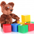 Sitting bear toy and color cubes isolated on white — Stock Photo #11485359