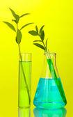 Zkumavky se barevné řešení a rostlin na žlutém pozadí detail — Stock fotografie