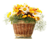 Beautiful bouquet of bright wildflowers in basket, isolated on white — Stock Photo