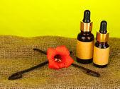 Vagem de baunilha com óleo essencial em fundo colorido — Foto Stock