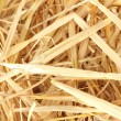 Royalty-Free Stock Photo: Golden straw texture background close-up
