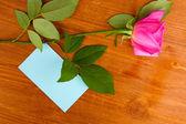 Vacker ros på trä bakgrund — Stockfoto