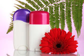 Deodorants with flower and green leaf on pink background — Stock Photo