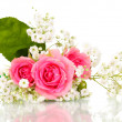 Stock Photo: Pink roses in bouquet isolated on white