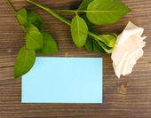 Mooie rose op houten backgground — Stockfoto