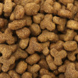 Background of dry cat food — Stock Photo