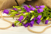 Blue bell flowers and burlap on white wooden background — Stock Photo