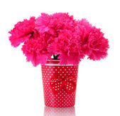 Bouquet of carnations in a vase isolated on white — Stock Photo