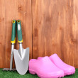Gardening tools on wooden background - Stock Photo
