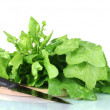 Spinach on a cutting board isolated on white - 图库照片