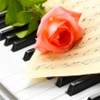 Background of piano keyboard with rose — Stock Photo #11562868