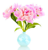 Three pink peonies in vase isolated on white — Stock Photo