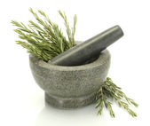 Mortar with fresh green rosemary isolated on white — Stock Photo