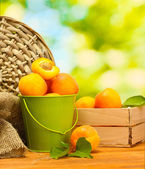 Bucket and wooden box with ripe apricots on wooden table on green background — Stock Photo