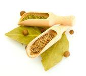 Palas de madera con especias en las hojas de laurel aisladas en blanco — Foto de Stock