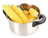 Fresh corn cobs in pot isolated on white — Stock Photo