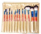 Set of make-up brushes in golden leather case isolated on white — Stock Photo