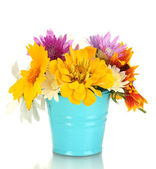 Beautiful bouquet of bright wildflowers in blue metal bucket, isolated on white — Stock Photo