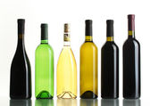 Bottles of wine isolated on white — Stock Photo