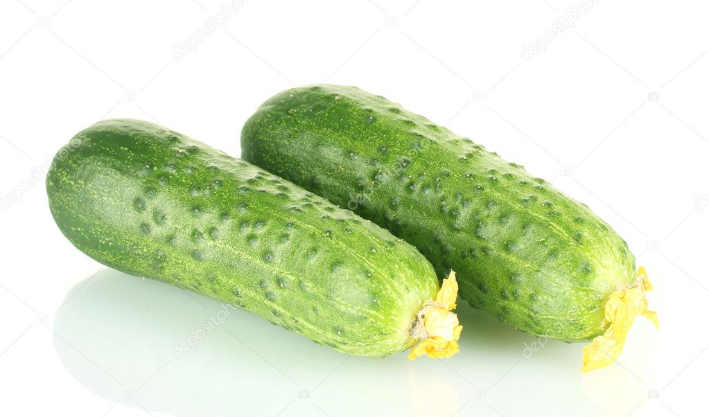 Fresh cucumbers isolated on white — Stock Photo #11604916