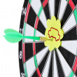 Stock Photo: Darts with stickers depicting life values close-up on white background